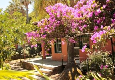 Casa Vacanze Le Palme Garden